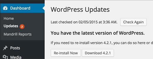atualizar site wordpress