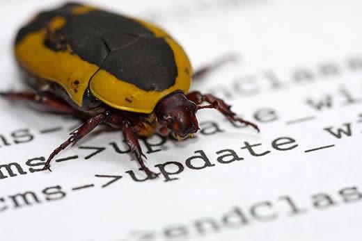 bugs no site